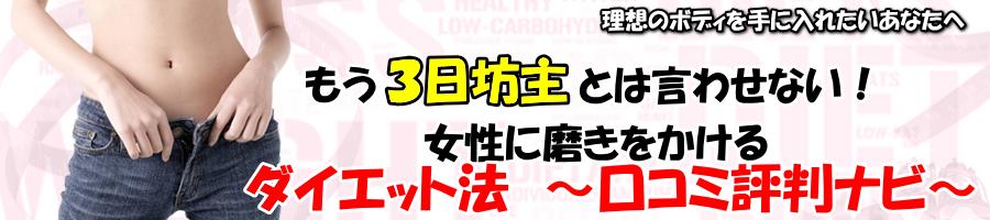 ダイエット法 ~口コミ評判ナビ~